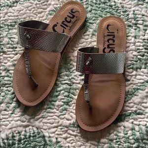 Circus Sam Edelman thong sandal